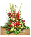 helliconia table flower